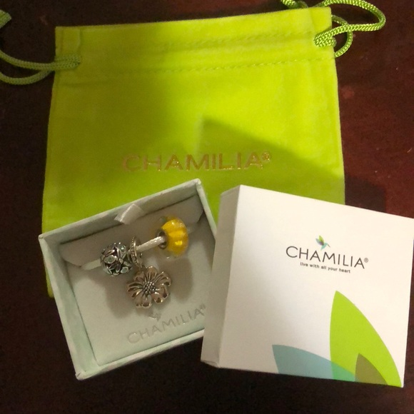 Chamilia Packaging Gift Bag